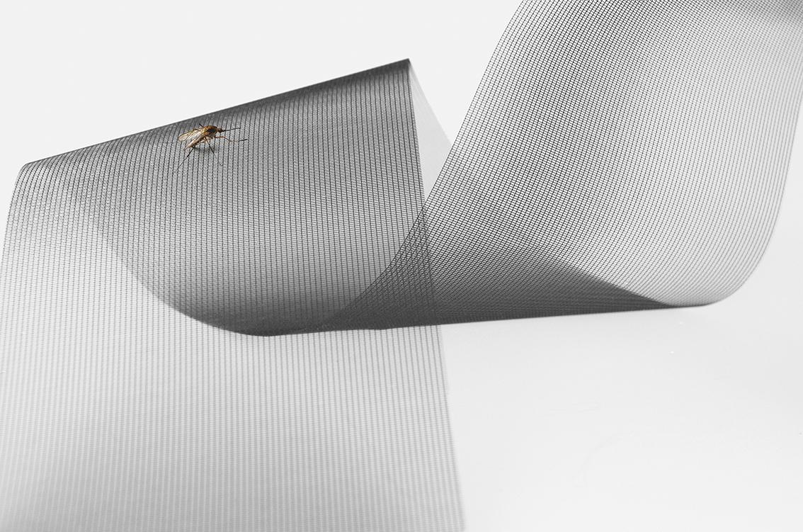 Insektenschutz - Maler Buban